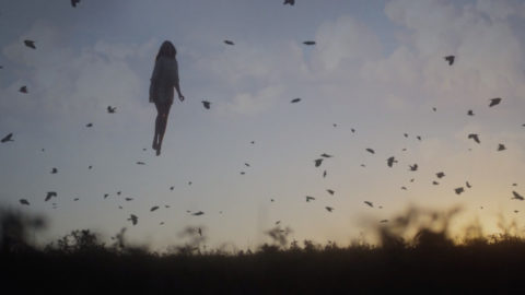 craghoppers - trouserless nightmare