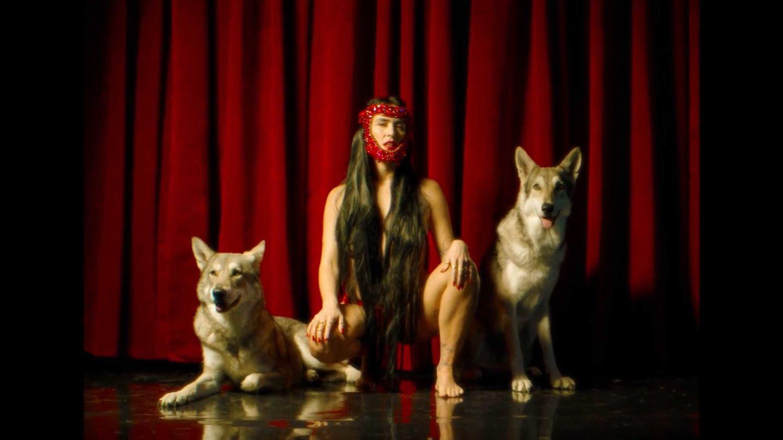 la chica - la loba